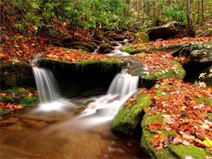 automne balade