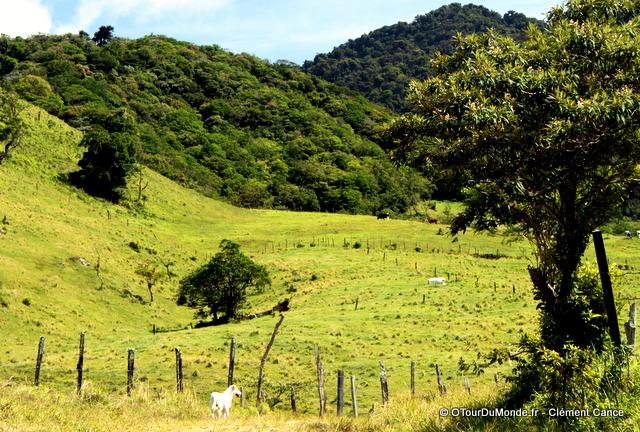 La vallée de Boquete