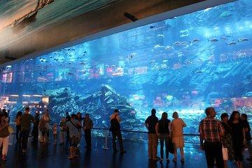 Aquarium-Dubaï-mall
