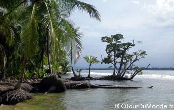 OTDM-Bastimentos-plage-protégée