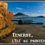 Tenerife : l'île au printemps éternel