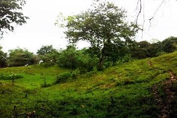 terrain_cristobal