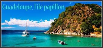 Guadeloupe, l'île Papillon !