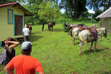 ranch PanamaHorseback